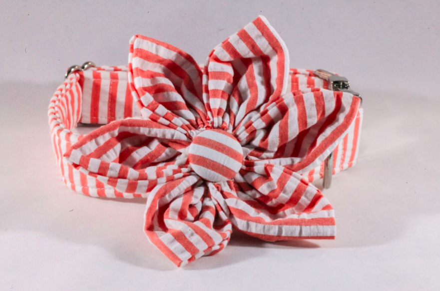 Preppy Coral Seersucker Girl Dog Flower Bow Tie Collar