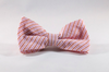 Preppy Pink and Orange Sherbet Seersucker Dog Bow Tie