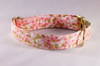 Champagne Pop Pink and Gold Polka Dot Dog Collar--Valentine's Day