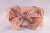 Preppy Orange Seersucker Girl Dog Bow Tie Collar