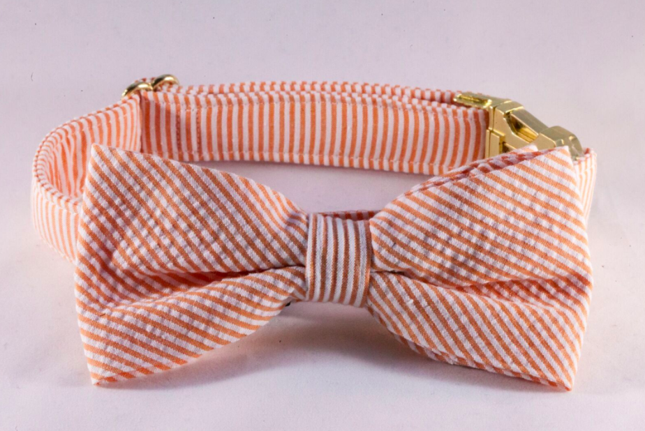 Preppy Orange Seersucker Bow Tie Dog Collar