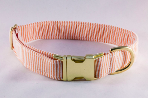 Preppy Classic Orange Seersucker Dog Collar