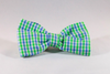 Blue and Green Gingham Seersucker Dog Bow Tie Collar