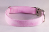 Preppy Pink Seersucker Dog Collar