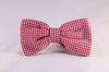Preppy Red Gingham Dog Bow Tie