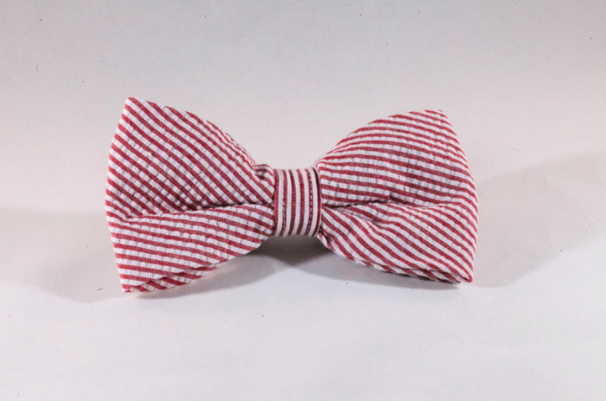Preppy Red Seersucker Dog Bow Tie