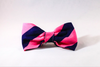 Preppy Navy Blue and Pink Stripe Dog Bow Tie