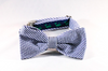 Seersucker Navy Blue Nantucket Whale Bow Tie Dog Collar