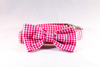 Preppy Hot Pink Gingham Bow Tie Dog Collar