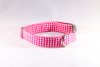 Preppy Hot Pink Gingham Dog Collar