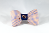 Preppy Blue and Orange Gingham UVA Cavaliers Football Dog Bow Tie Collar