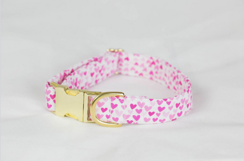 Preppy Pink Hearts Valentine's Day Dog Collar