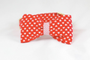 Be My Valentine Red Hearts and Seersucker Dog Bow Tie Collar