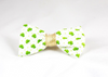 Luck of the Irish St. Patrick's Day Green and Gold Clover Dog Bow Tie