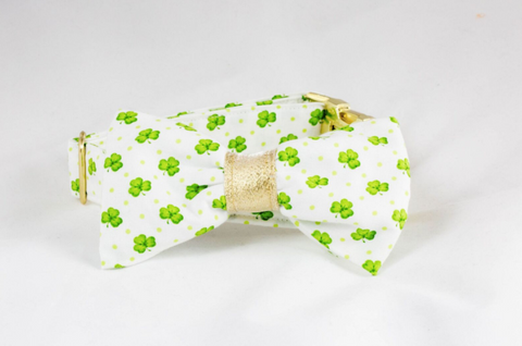 Luck of the Irish St. Patrick's Day Green and Gold Clover Bow Tie Dog Collar