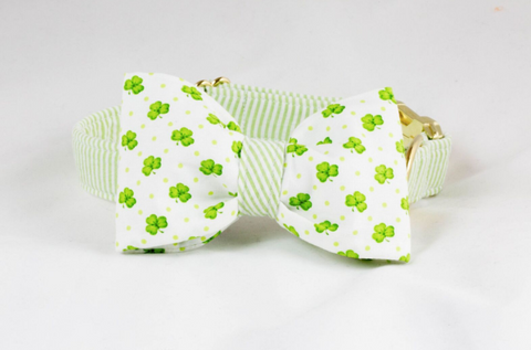 Luck of the Irish St. Patrick's Day Green Seersucker Clover Bow Tie Dog Collar