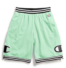 Load image into Gallery viewer, Champion Life® Men's Rec Mesh Shorts
