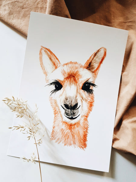 Llama Watercolour Print - seconds