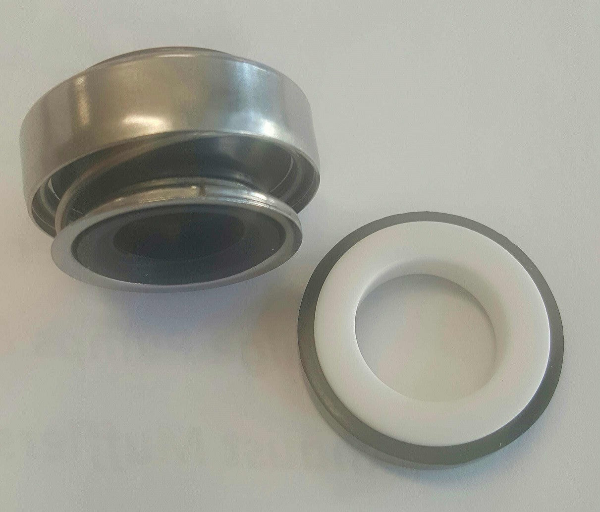 Johnson Mechanical Seal Replacement AN 6190