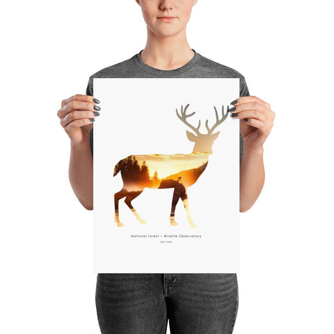 National Autumn Forest | Poster