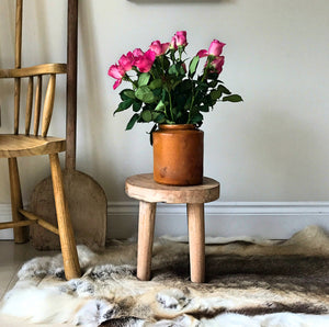 interior design with reindeer hide rug and flowers