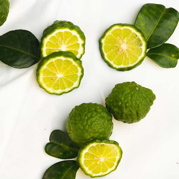 The Benefits of Thai Makrut Lime