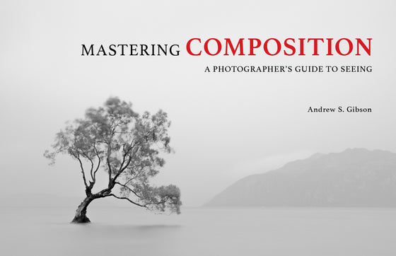 Mastering Composition ebook