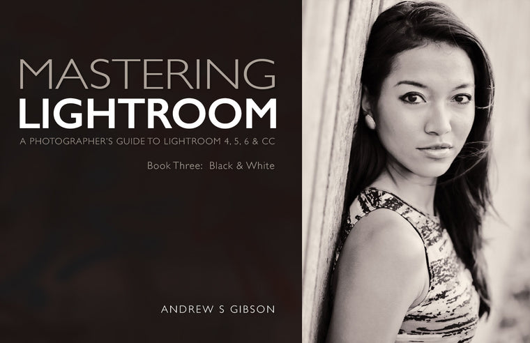Mastering Lightroom: Book Three – Black & White ebook