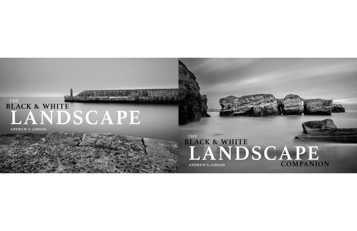 The Black & White Landscape Bundle [snapndeals]