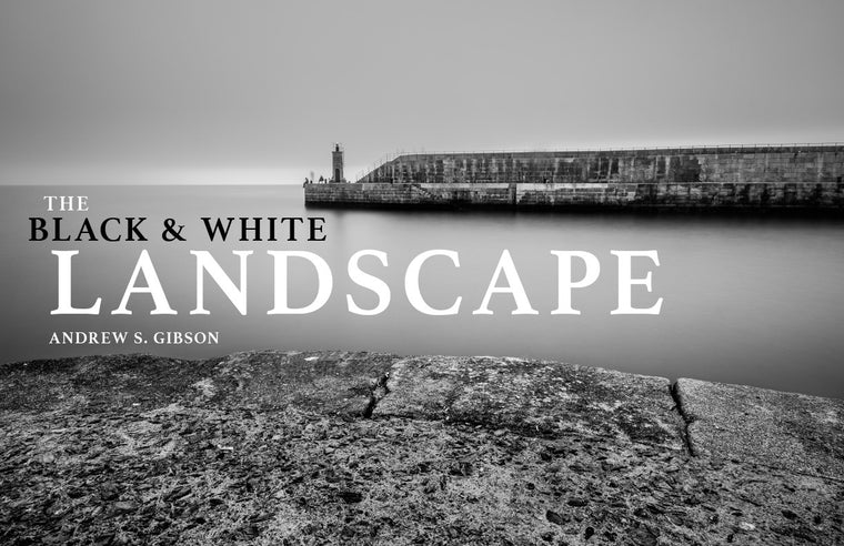The Black & White Landscape ebook cover