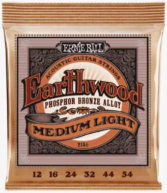 Ernie Ball Earthwood Acoustic Guitar Strings - 12/54 Med Light