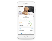 Dog Activity Tracker