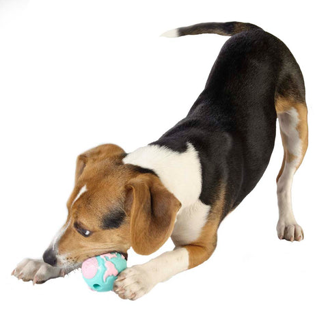 The Pup ball is made from the award-winning Orbee-Tuff material, which is 100% recyclable and non-toxic. Toy is made specifically for puppies and is durable, bouncy, buoyant, and perfect for tossing, fetching, and bouncing. Toy is infused with natural mint oil.