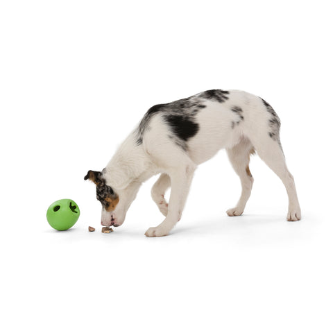 """Rumbl is a super bouncy and crazy fun treat-dispensing puzzle toy with a playful wobble that adds excitement and increases engagement. Toy floats and dogs love the chewy resistance of the hollow construction. The unique """"fish trap"""" opening makes for easy loading, yet keeps treats inside."""