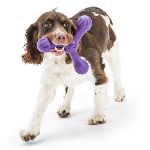 Skamp is a three-lobe shaped toy that is ready for toss, fetch, or tug-o-war. Toy floats and can fly far when tossed. Dogs love its bounce back resistance. Built for moderate chewers and made from Zogoflex, a bendy, stretchy, and bouncy material that is durable but not rigid. Toys are gentle on your dog's teeth.