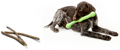 Zwig is a bendy and squishy fetching stick that combines shapes and textures to create an irresistible chew-feel with a bouncy action that keeps going even when dogs are just carrying it around. It is easy for puppies and senior dogs to grasp by mouth or hold between their paws while chewing.