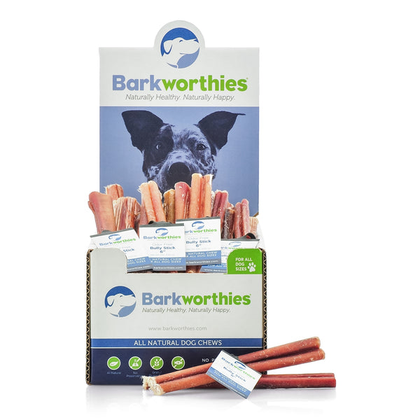 Barkworthies Bully Sticks are all-natural chews for your dog that will keep them busy for hours. Bully sticks are considered a high value treat, which makes them great for redirection training for constant chewers or dogs who may be anxious in social situations.