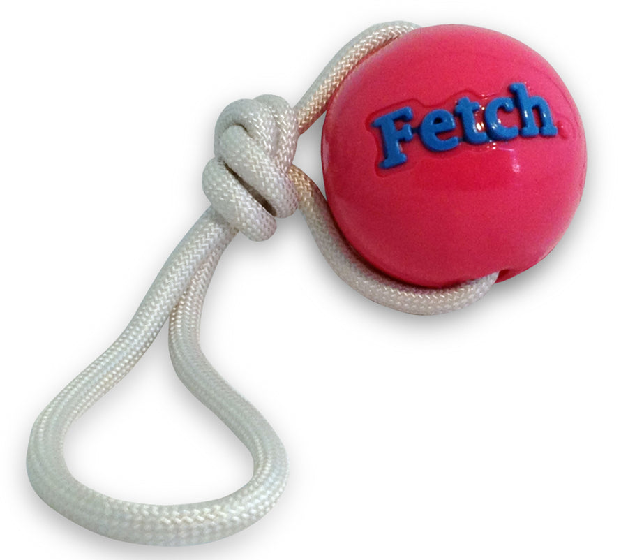 Orbee-Tuff Fetch Ball with Rope - Dogs Dig It