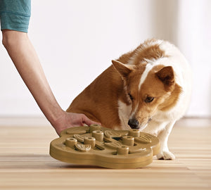 Nina Ottosson Dog Hide n' Slide Puzzle