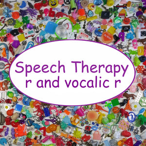 SPEECH THERAPY TRINKETS - r and vocalic r
