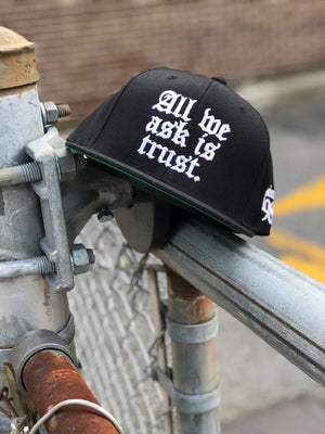 All We Ask Is Trust Snapback