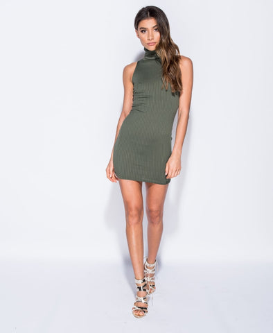 Danielle Rib Sleeveless Roll Neck Mini Dress