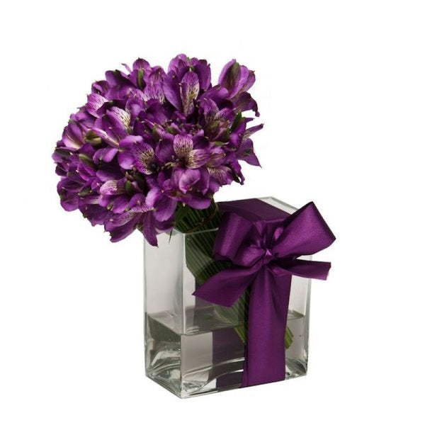 Sensations - Purple - The Shop Flowers