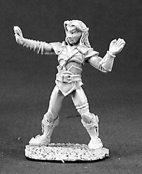 DnD Miniature Elf Monk