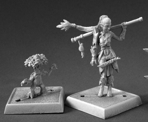 Pathfinder Miniatures Druid and Familiar 60147