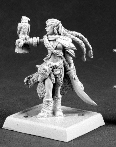 Pathfinder Miniatures Nature Warden 60064