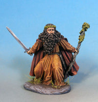 D&D Male Druid Miniature