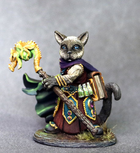 D&D Miniature Cat Wizard