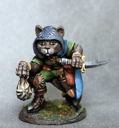 D&D Miniature Cat Rogue