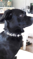 Pet Collar With Personalized Diamond Name Gucci
